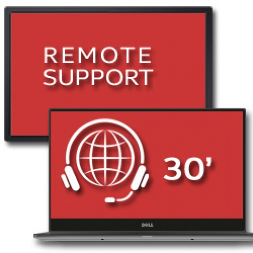 Remote Support 30'