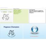 Pegasus Γυμναστήρια | Champion ERP